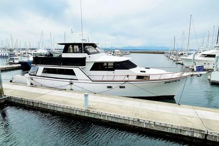 Angel Custom Skylounge Pilothouse for sale in United States of America for $249,000 (£181,216)