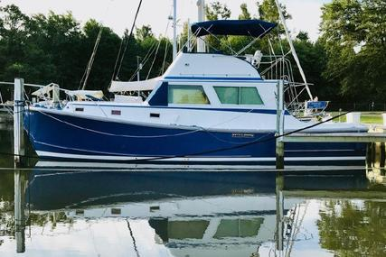Wilbur 38 Downeast Flybridge for sale in United States of America for $79,500 (£57,824)