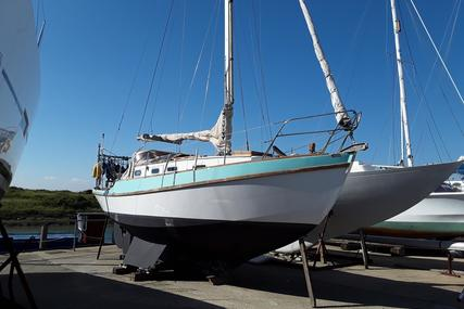 Golden Hind 31 for sale in United Kingdom for £19,950