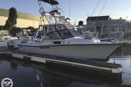 Rampage 280 SPORTSMAN DELUXE for sale in United States of America for $24,500 (£17,820)