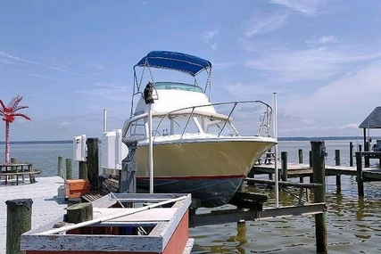 Bertram 25 for sale in United States of America for $24,500 (£17,524)