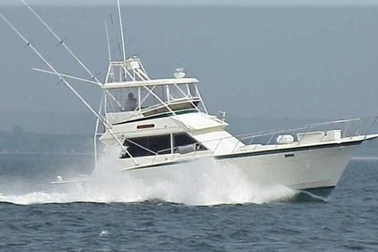 Hatteras 43 Convertible for sale in United States of America for $79,900 (£57,611)