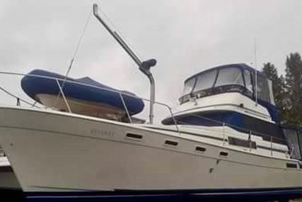 Bayliner for sale in United States of America for $77,999 (£56,094)