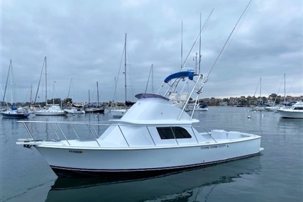 Bertram 31 Convertible for sale in United States of America for $225,000 (£161,554)