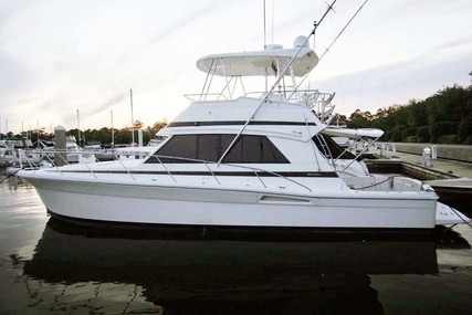 Riviera 43 Flybridge for sale in United States of America for $209,000 (£149,830)