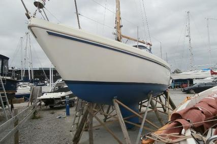 Seamaster 815 for sale in United Kingdom for £5,900