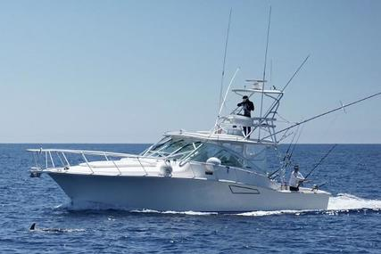 CABO 40 Express for sale in Spain for €300,000 (£256,029)