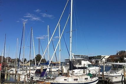 BAYFIELD 29 for sale in United States of America for $35,600 (£25,859)