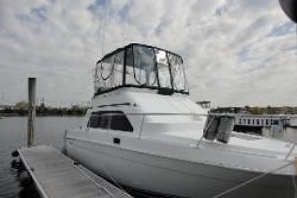 Mainship Sedan Bridge for sale in United States of America for $38,500 (£27,620)