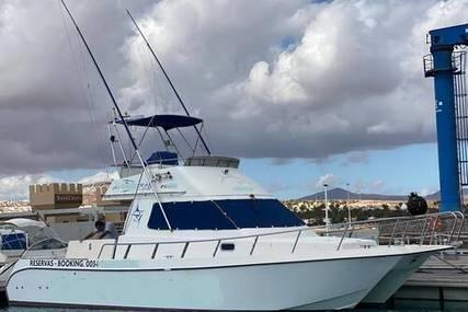 Cata 356 Sportfisherman for sale in Spain for €95,000 (£81,071)