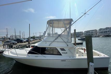 Blackfin 29 Flybridge for sale in United States of America for $78,500 (£57,441)