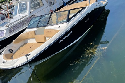 Sea Ray 190 SPX OB for sale in Netherlands for €44,500 (£37,447)