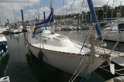 Trapper 500 for sale in United Kingdom for £5,500