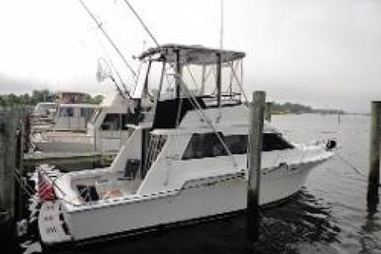 Luhrs Convertible for sale in United States of America for $48,500 (£35,381)