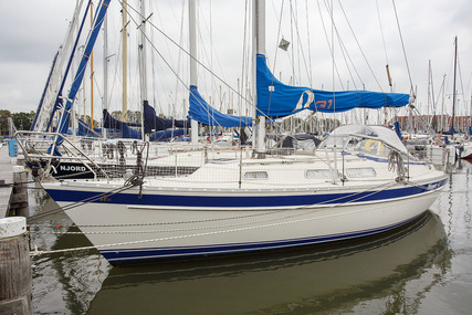 Hallberg-Rassy 31 for sale in Netherlands for €62,500 (£53,538)