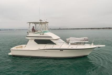 Hatteras Convertible for sale in United States of America for $149,000 (£108,497)