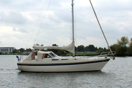 Finnsailer 34 for sale in Netherlands for €38,500 (£32,459)