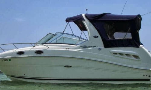 Image of Sea Ray 260 Sundancer for sale in United States of America for $49,200 (£39,082) Fort Lauderdale, Florida, United States of America