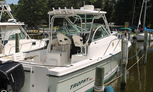 Image of Trophy Pro 2902 Walkaround for sale in United States of America for $43,000 (£30,367) Southern Shores, North Carolina, United States of America