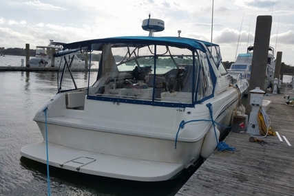 Sea Ray 400 Express Cruiser for sale in United States of America for $82,499 (£62,575)