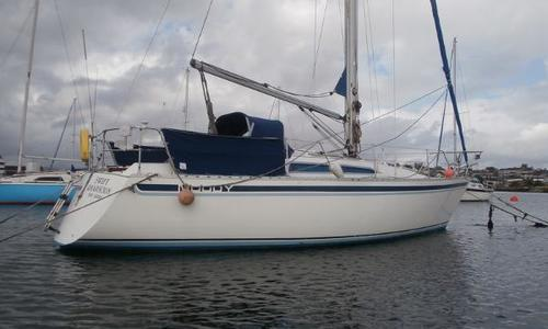 Image of Moody 31 for sale in United Kingdom for £28,250 Plymouth, United Kingdom