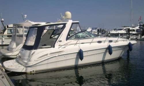 Image of Sea Ray 365 Sundancer for sale in Germany for €79,900 (£71,335) BONNINGSTEDT, Germany