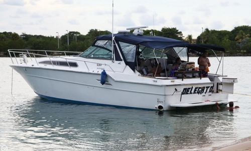 Image of Sea Ray 460 Express Cruiser for sale in United States of America for $40,000 (£28,638) Miami, Florida, United States of America