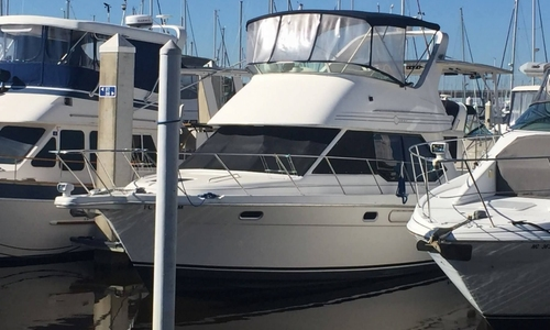 Image of Bayliner 3587 for sale in United States of America for $45,000 (£34,149) Jacksonville, Florida, United States of America