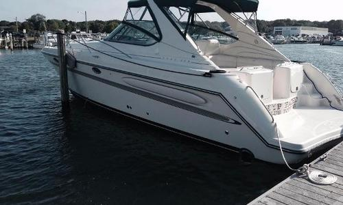 Image of Maxum 3900 SCR for sale in United States of America for $79,000 (£56,659) Chinicock/County Marina, NY, United States of America