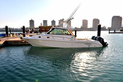 Everglades 350 EX for sale in Qatar for $368,000 (£265,522)