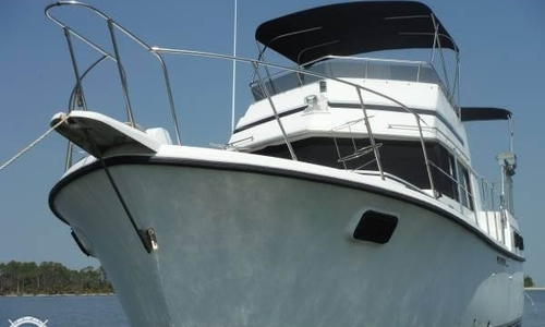 Image of Carver 3607 Aft Cabin for sale in United States of America for $28,900 (£20,575) Savannah, Georgia, United States of America