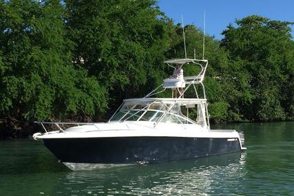 Contender 38 Express for sale in Puerto Rico for $245,000 (£175,184)