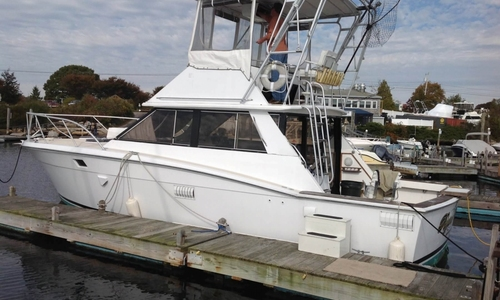 Image of Trojan F36 Flybridge for sale in United States of America for $26,500 (£20,100) Wakefield, Rhode Island, United States of America