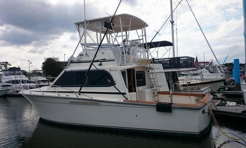 Image of Egg Harbor 35 Sportfisher for sale in United States of America for $112,000 (£84,739) Norfolk, Virginia, United States of America