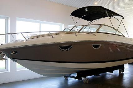 Cobalt 243 for sale in Poland for $145,572 (£104,485)