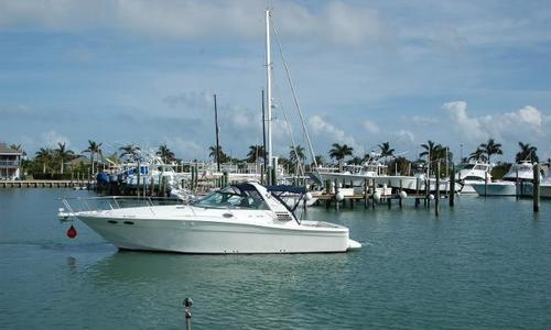 Image of Sea Ray 37' Express Cruiser for sale in United States of America for $69,900 (£54,815) Ft. Pierce, FL, United States of America