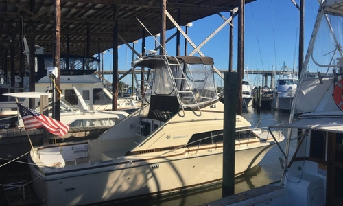Image of Bertram 30 Flybridge Cruiser for sale in United States of America for $22,500 (£17,023) Coden, Alabama, United States of America