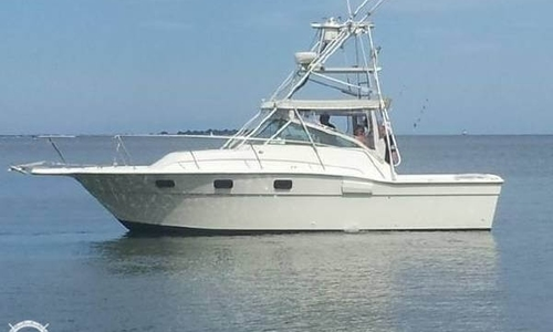 Image of Aquasport 290 Express Fisherman for sale in United States of America for $13,000 (£9,321) Newburyport, Massachusetts, United States of America