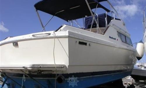 Image of Mochi Craft DOMINATOR 31 FLY for sale in Italy for €47,000 (£42,002) Toscana, Italy