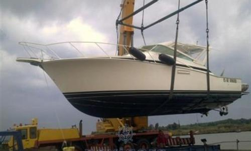 Image of Bertram 38 Special for sale in Italy for €95,000 (£83,215) Toscana, Italy