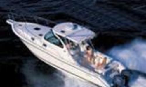 Image of Pursuit 3370 for sale in Italy for €100,000 (£87,626) Toscana, Italy
