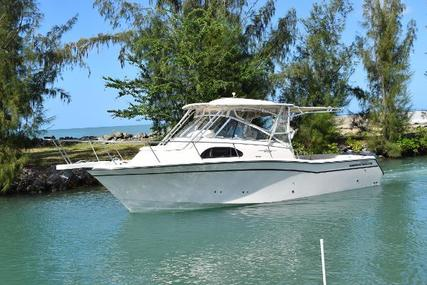 Grady-White Marlin 300 for sale in Puerto Rico for $129,000 (£91,102)