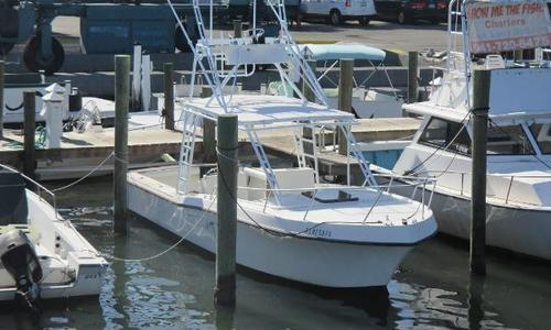 Image of Mako 286 for sale in United States of America for $19,999 (£15,135) Palmetto, FL, United States of America