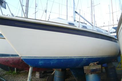 Westerly Griffon for sale in United Kingdom for 8.000 £
