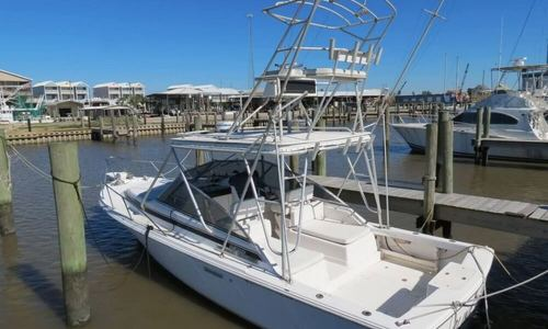 Image of Blackfin 29 for sale in United States of America for $36,000 (£27,244) Cypremort Point, Louisiana, United States of America