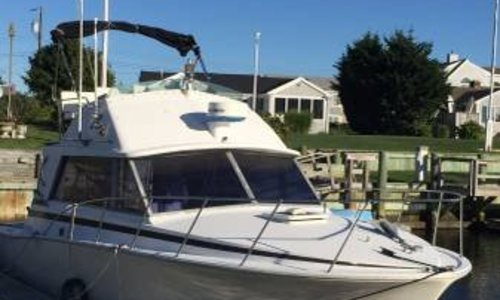 Image of Bertram 33 Convertible for sale in United States of America for $27,900 (£21,631) West Dennis, Massachusetts, United States of America