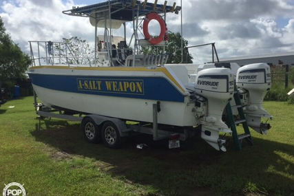 Sea Cat SL 2550 for sale in United States of America for $17,500 (£12,478)