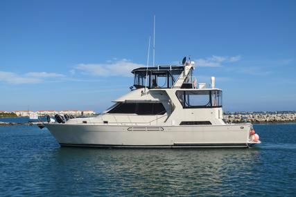 ANGEL MARINE Trader 48 Cockpit Motor Yacht for sale in United States of America for $99,000 (£69,542)