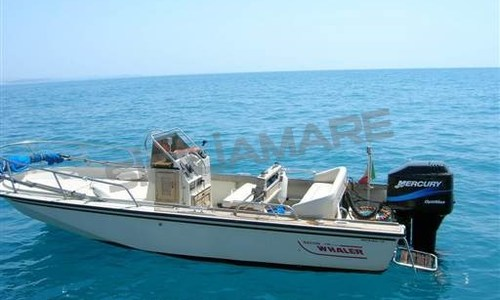 Image of Boston Whaler 18 Outrage for sale in Italy for €23,000 (£20,652) Sicilia, Italy