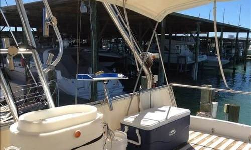 Image of Hardin 41 for sale in United States of America for $75,800 (£54,227) Clearwater, Florida, United States of America